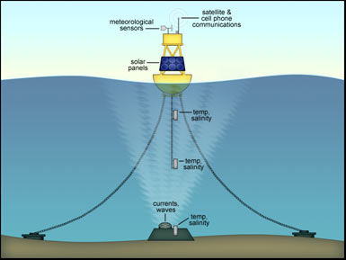 Offshore Buoy Weather Data At Fishing Nc Com Nc Offshore