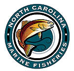 N c division of marine fisheries for Nc wildlife fishing license