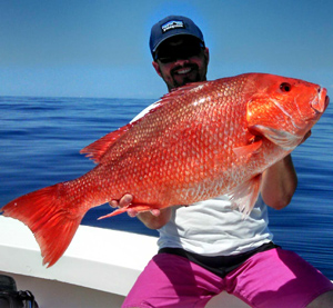 Image gallery nc fish for Nc saltwater fish