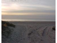 The beautiful NC coast